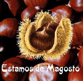 Gran Magosto e Chourizada.