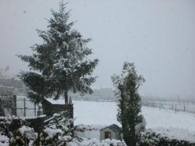 A nevada do venres